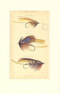Coloured illustration of salmon flies from The Book of the Salmon