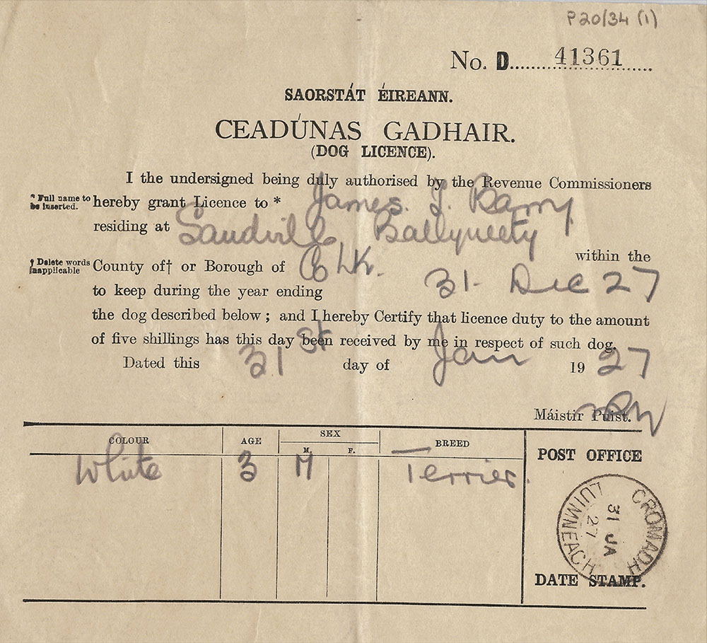 Dog licence for a white terrier, issued for James T. Barry, featuring annotations and stamp